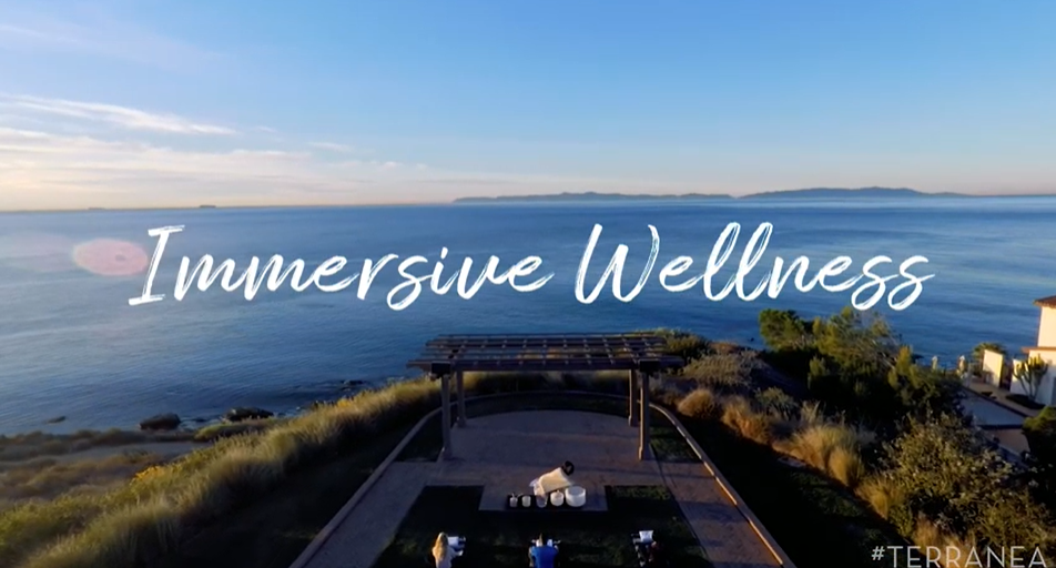 Immersive Wellness